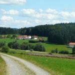 Schöfweg
