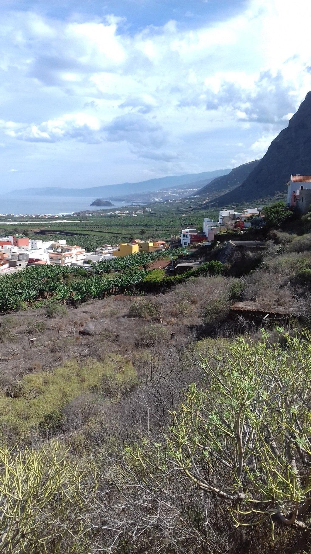 Tenerife északi táj